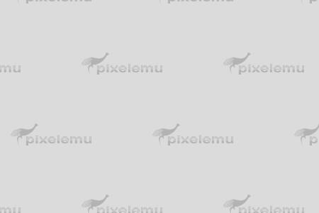 pe_image_carousel-1-2
