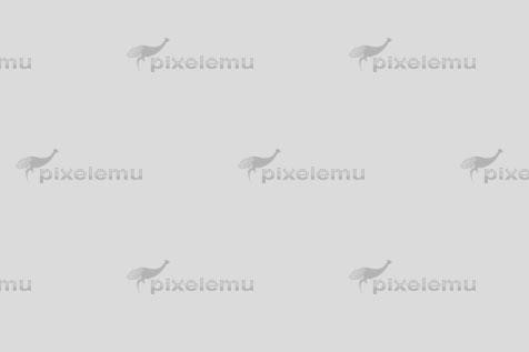 Polska Izba Informatyki i Telekomunikacji ( PIIT ) Warszawa